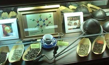 Muzeum ve kterém voní káva