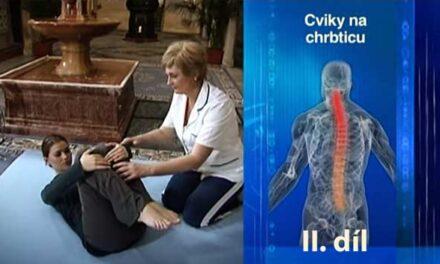 Cviky na zmírnění bolesti zad pod odborným dozorem terapeutů II.